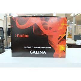 Набор Биокамин Kratki GALINA, биотопливом (1 шт.х 1.5л.), зажигалкой